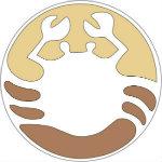 Navini Logo