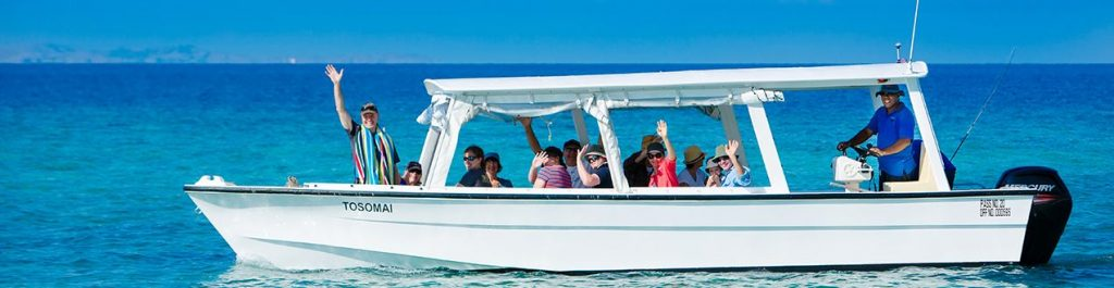 Morning Boat Trip