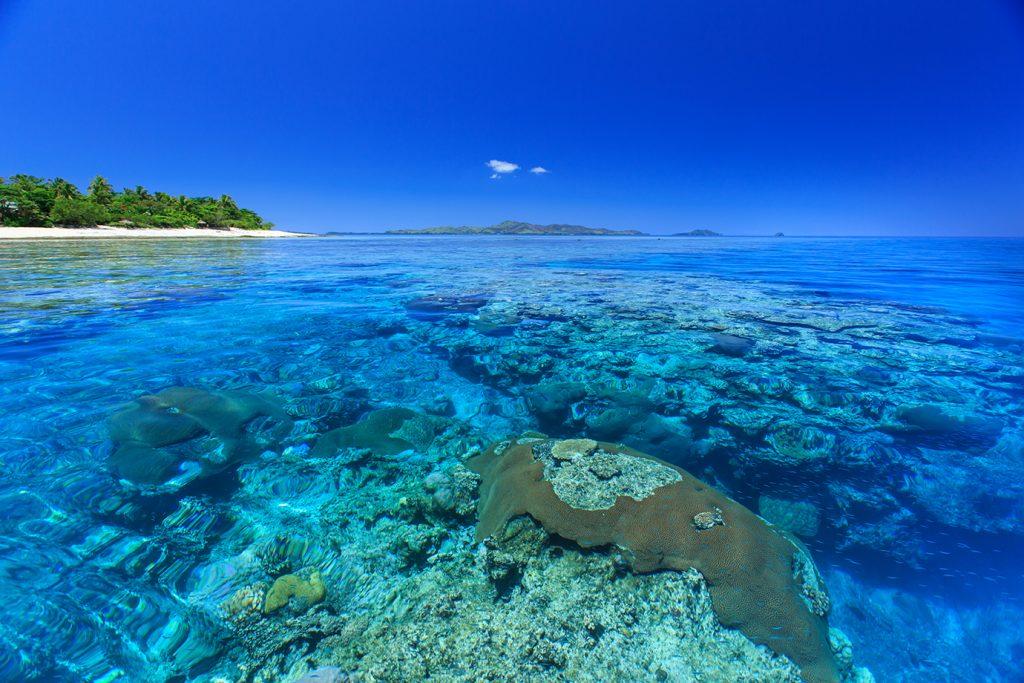 Navini Island and Reef