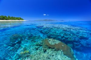 Navini Island and Reef