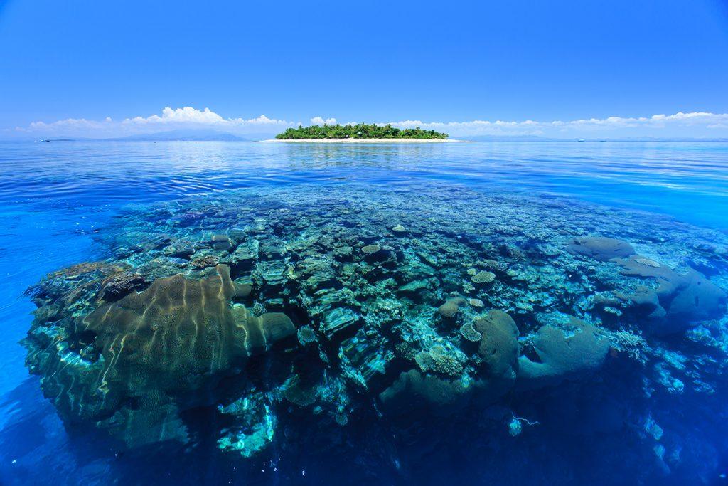 Reef Sanctuary